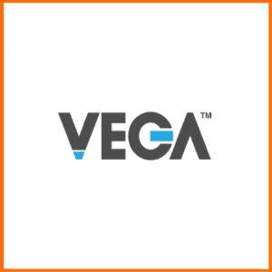 Цилиндры VEGA